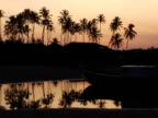 WS, Silhouettes of boat and palm trees at sunset, Jericoacoara, Brazil