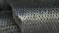 Silvery scales cover the skin of Kohada fillets.