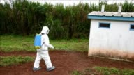 A simulation to test the medical services of Ivory Coast has been organised in the presence of the minister of Health in the small village of...
