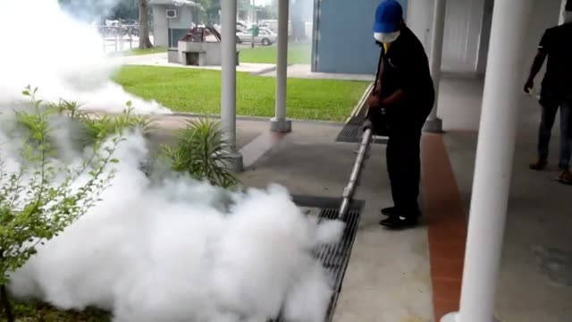 Singapore's Zika outbreak escalates as neighbouring Malaysia reports one of its citizens returned infected from the city state infected and the...