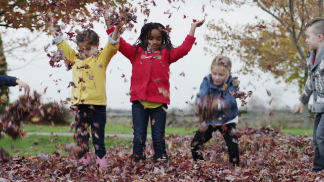 Six and seven year old children playing in the autumn leaves