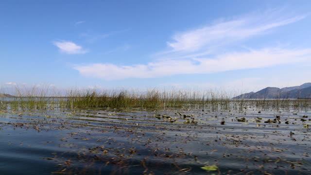Đurađ Nationaal Park Lake, Albanië
