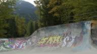 WS Skateboarder does move on ramp in Whistler skatepark / Whistler, British Columbia, Canada