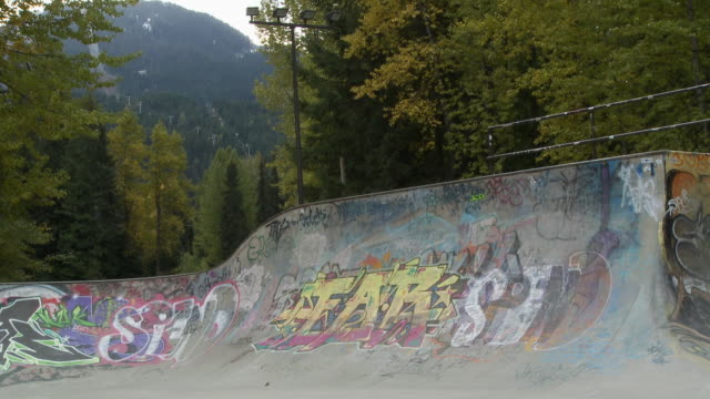 WS Skateboarder does move on ramp in Whistler skatepark / Whistler, British Columbia, Canada