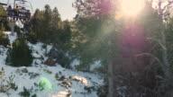 Ski lift and sun across tree.