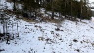 Ski lift point of view ride