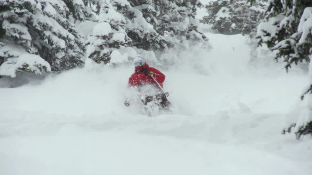 WS TD ZO PAN SLO MO Skier skiing in powdery snow / Alta, Snowbird, Utah, USA
