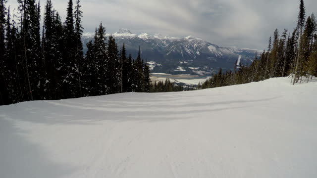 Skiing Point of View