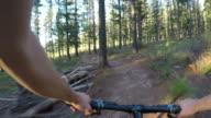 4K erfahrenen Mountainbike-Touren