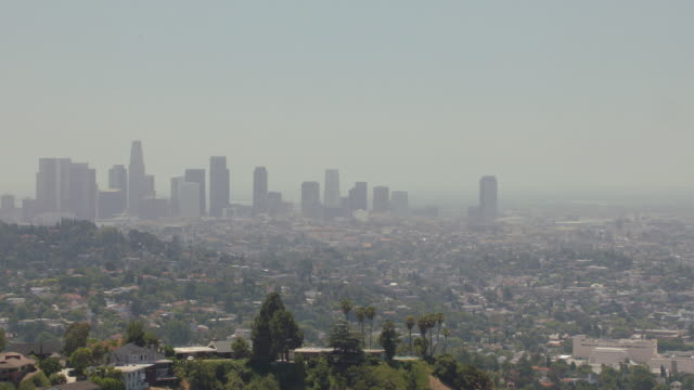 WS Skyline of downtown Los Angeles and surrounding neighborhoods / Los Angeles, California, United States