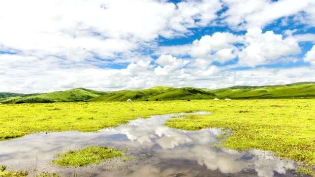 skyline,cloud and meadow in tibet,timelapse.