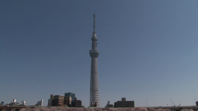 Skytree And Cherry Blossoms Beyond Sumida River, Japan