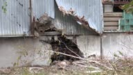 Slavyansk of Ukraine being the place of the fierce clashes between proRussian separatist and the Ukrainian security forces goes under the wrecking...