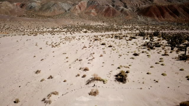 Langzame vlucht Over Barren woestijn vallei