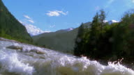 Slow motion boat/raft point of view in rough water of rapids in river / trees and mountains in background / British Columbia