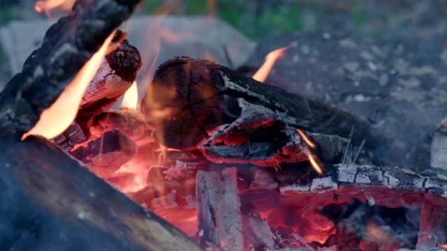 Slow Motion Camp Fire Closeup