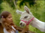 slow motion CANTED close up profile of girl with pigtails holding leash + facing white alpaca outdoors