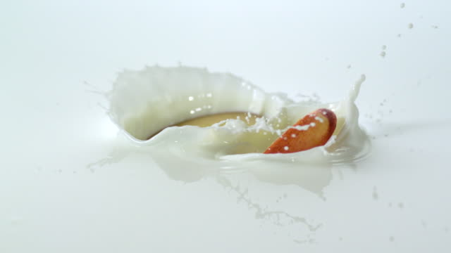 Slow motion close up dropping many peaches into milk, causing splashing, against white background / Studio, New Jersey, United States