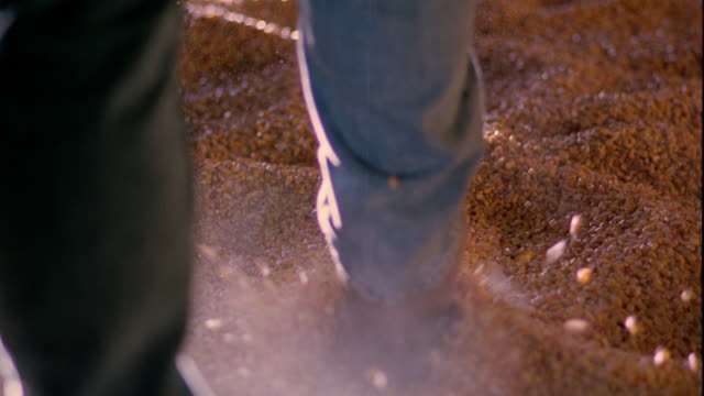 Slow motion close up rear view man's boots walking through grain/corn pile and kicking up dust / Iowa