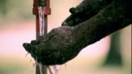 Slow motion close up tilt down tilt up man washing black grease and dirt off of hands + arms under outdoor faucet / Iowa