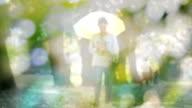 Slow motion HD:woman walking in a park holding an umbrella, blur shot at bokeh
