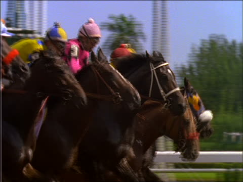 slow motion horses leaving starting gate on racetrack / Breeder's Cup, Gulfstream Park, Hallandale, FL