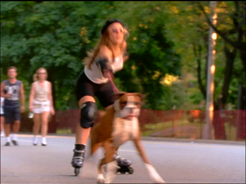 slow motion large dog leading woman in inline skates down city sidewalk / NYC