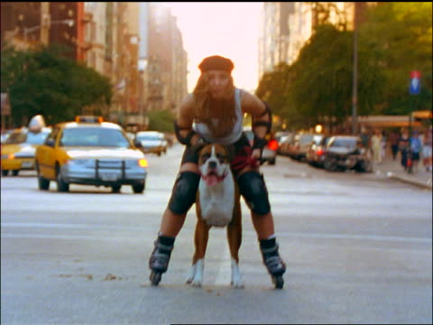 slow motion large dog pulling woman in inline skates down city street towards camera / NYC