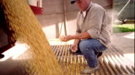 Slow motion medium shot dolly shot tilt down man in hat examining grain/corn pouring from back of truck into grate on ground / IA