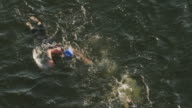 Slow motion of Ironman 70.3  women swimming race in Chattanooga, TN