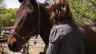 Slow motion shot of a woman brushing a horse's cheek.