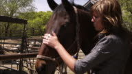 Slow motion shot of a woman grooming a horse.