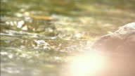 Slow motion shot of sunlight reflecting off flowing water.