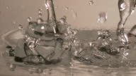 Slow motion shot of water droplets falling onto a pond skater.