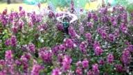 Slow motion, Splashing water sprinkler in garden flowers