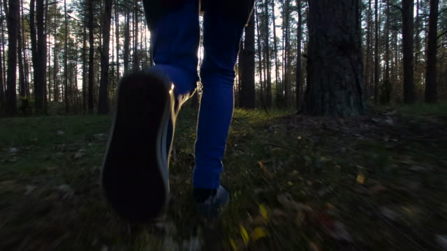 Slow motion: Sunset running in the forest