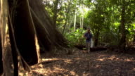 Slow motion wide shot couple hiking in rainforest past tall tree with large roots/ The Amazon, Brazil
