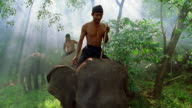 Slow motion wide shot two men riding on backs of elephants / Lampung, Sumatra, Indonesia