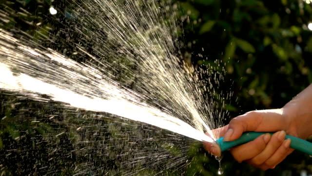 slow-motion, people watering tree in garden