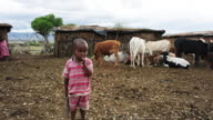 A small African boy stands in front of cows and hut