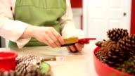 Kleinunternehmen Eigentümer Orte online-Bestellung mit Kreditkarte.