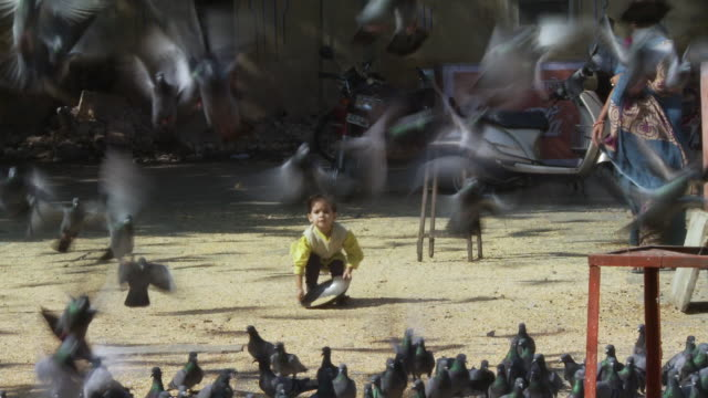 Small child feeds pigeons and they fly into the air