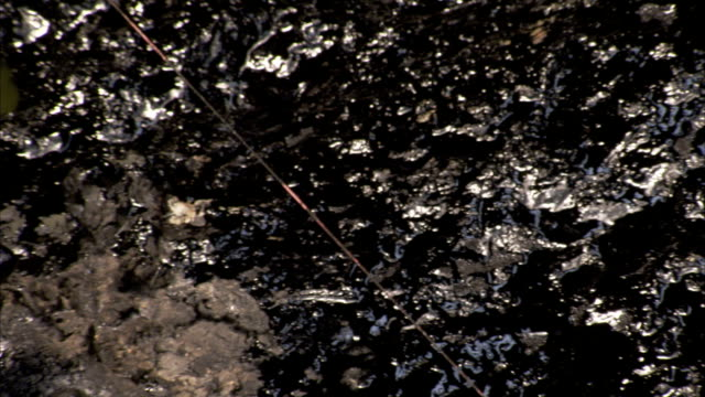 A small flag sticks out of thick mud. Available in HD.