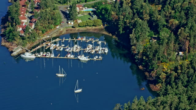 AERIAL Small port with white boats