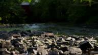 Small river and old bridge