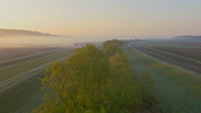 AERIAL Small stream between fields at dawn
