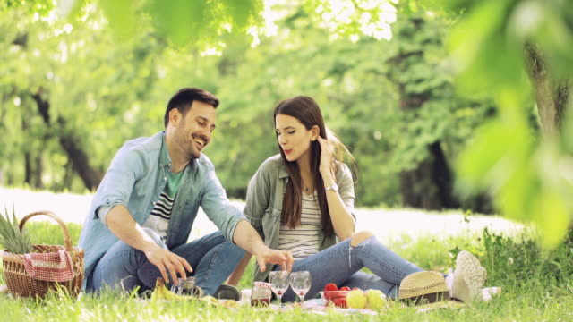 Smiling couple drinking wine and communicating while enjoying in picnic day during springtime.