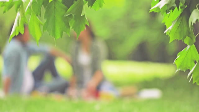 Smiling couple in love spending relaxing day on picnic in the park.