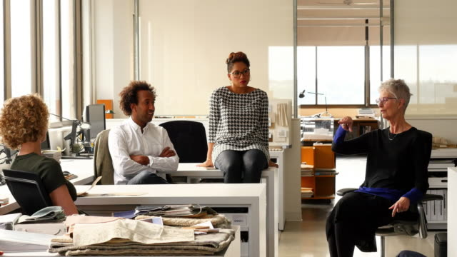 MS Smiling mature businesswoman in discussion with colleagues at office workstations