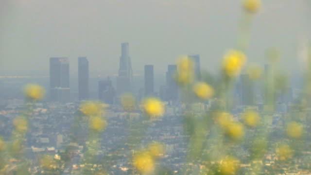 Smoggy die Skyline